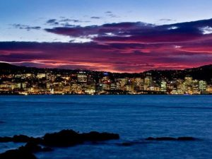 Good Night Wellington