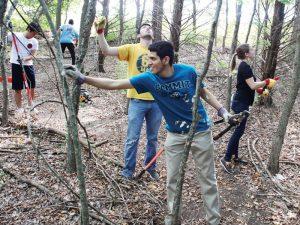Transforming a Community Park