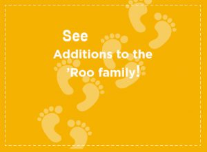 See additions to the 'Roo Family!