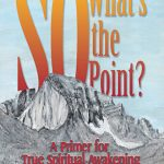 So What's the Point? by Dan Lively